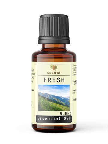 Fresh - Essential Oil Blend - SCENTA