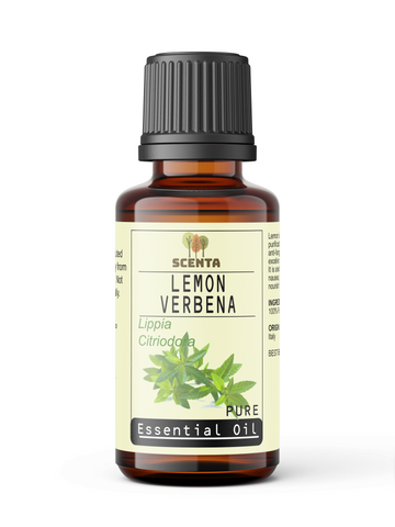 Lemon Verbena Essential Oil - SCENTA