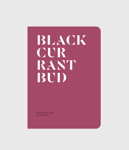 Blackcurrant Bud in Perfumery by Nez + LMR The Naturals Notebook