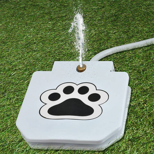 Outdoor Dog Drinking Water Fountain