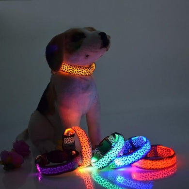 Wholesale Led Pet Collar