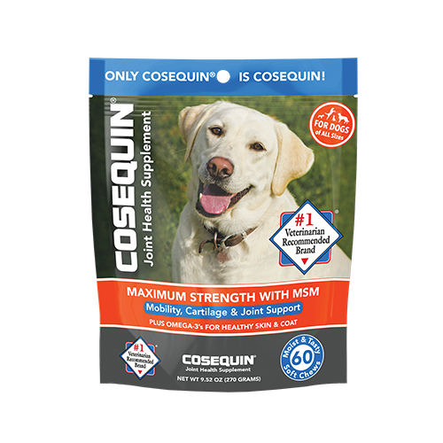 COSEQUIN® Maximum Strength with MSM Plus Omega-3's Soft Chew