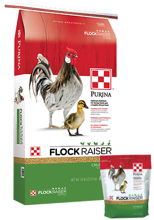 Purina® Flock Raiser® Crumbles