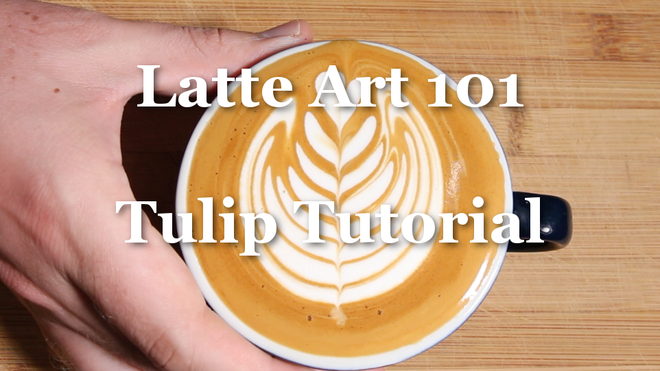Lesson Two - Tulip Tutorial