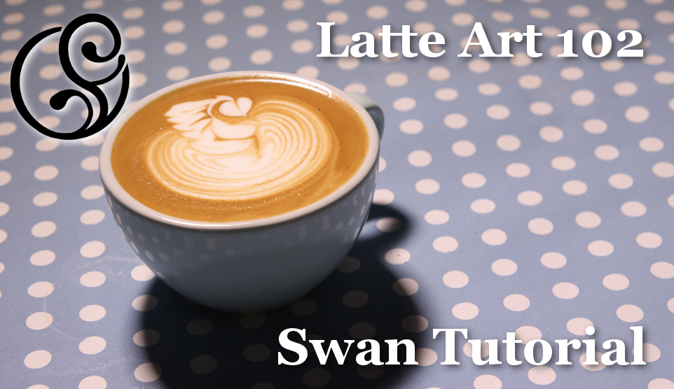 Lesson One - Swan Tutorial