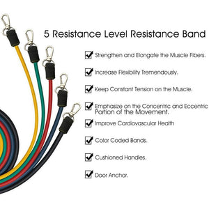 Home Gym Resistance Bands | 5 stackable bands to 110 lbs with Ankle Straps, Door Anchor, & Carry Bag