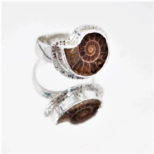 Ammonite with Textured Edge Ring