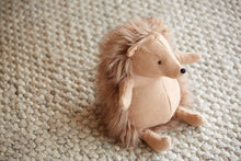 Load image into Gallery viewer, Citta Soft Toy Ray The Hedgehog