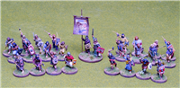 28mm Pict Skirmish Warband for Saga