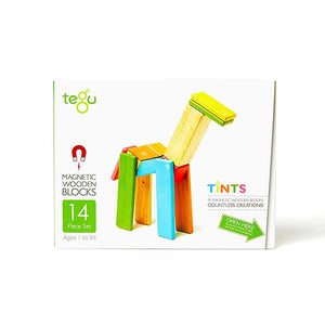 14 Piece Magnetic Wooden Block Set Tints