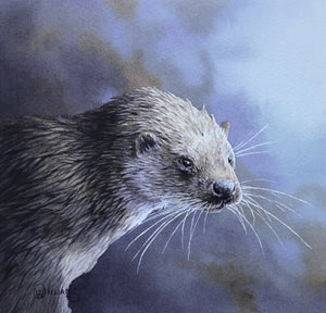 'Otter Study' - Original Watercolour Painting by Owen Williams - 16 x 18cm