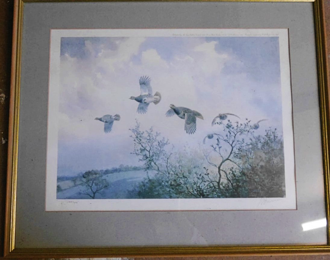 'Grey Partridges' Signed Limited Edition Print by JC Harrison - 37cm x 50cm