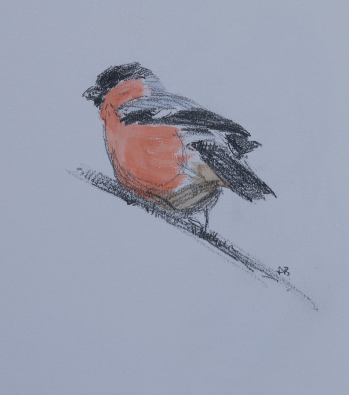 'Bullfinch' - Original pencil & watercolour sketch by Ashley Boon - 6.5 x 5.5""