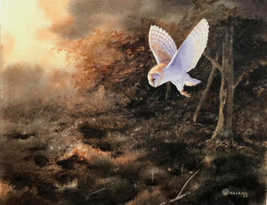 'Evening Barn Owl' - Original Watercolour Painting by Owen Williams - 22 x 27cm