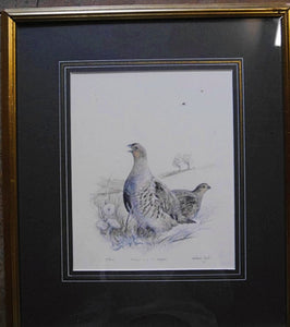 'Grey Partridge Pair and Skylark' Signed Limited Edition Print by William Garfit - 23cm x 19cm