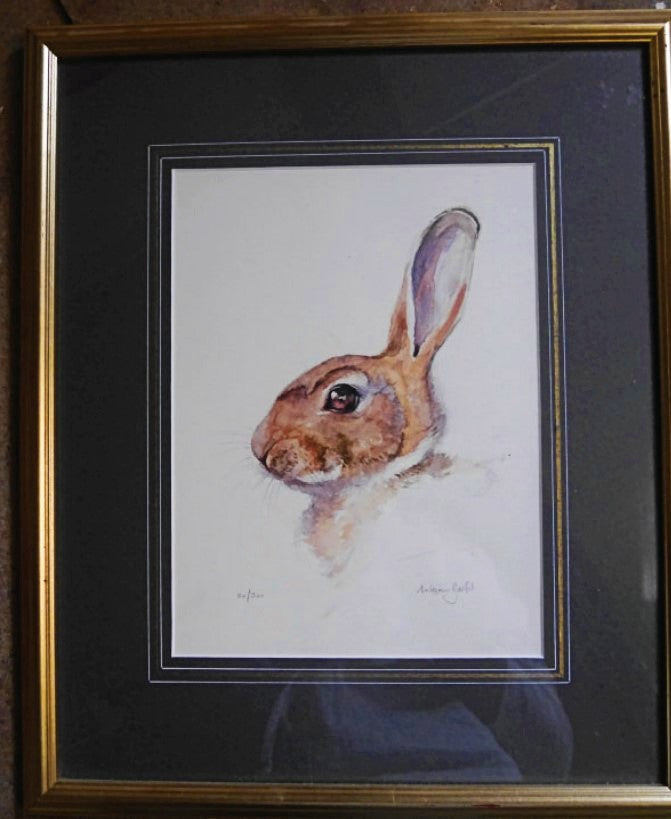 'Rabbit' Signed Limited Edition Print by William Garfit - 25.5cm x 19cm