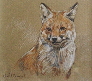 'Fox' - Original Watercolour by David Cemmick - 8 x 10cm