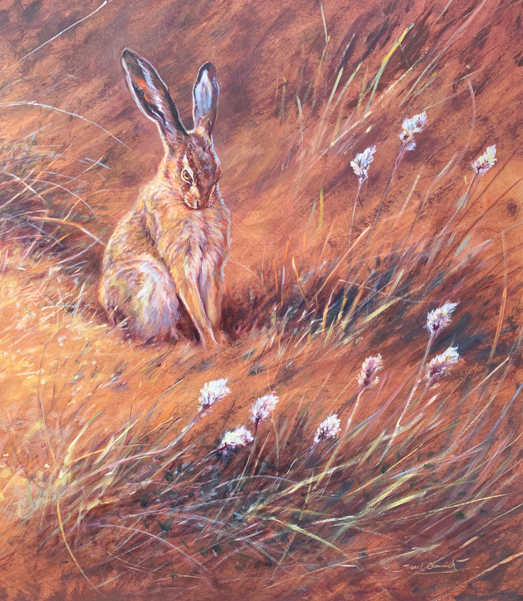 'Cotton grass morning' - Original Oil by David Cemmick - 74 x 65cm