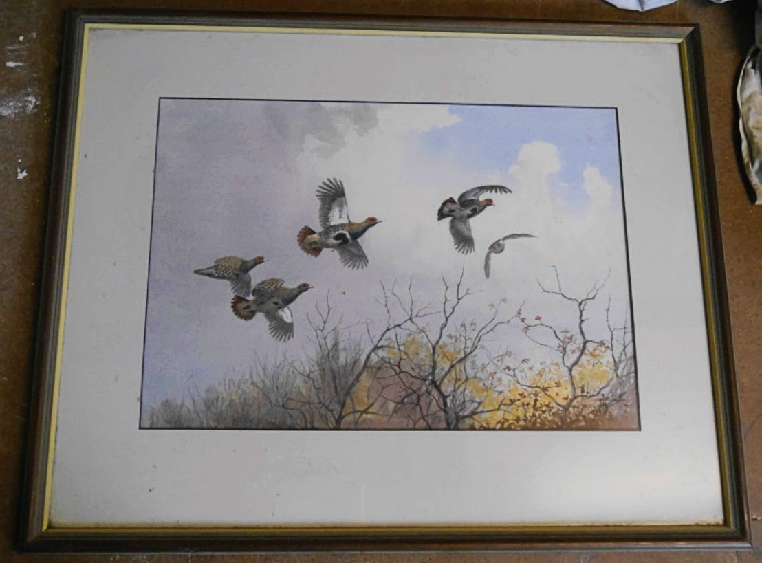 'Up and Over Partridges' Signed Original Painting by JC Harrison - 39cm x 55cm