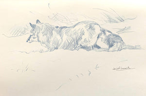'Fox Hunting' - Original Conte Drawing by David Cemmick - 20 x 30cm