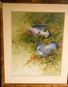 'Woodpigeons' Signed Original Painting by Rodger McPhail - 61cm x 45cm