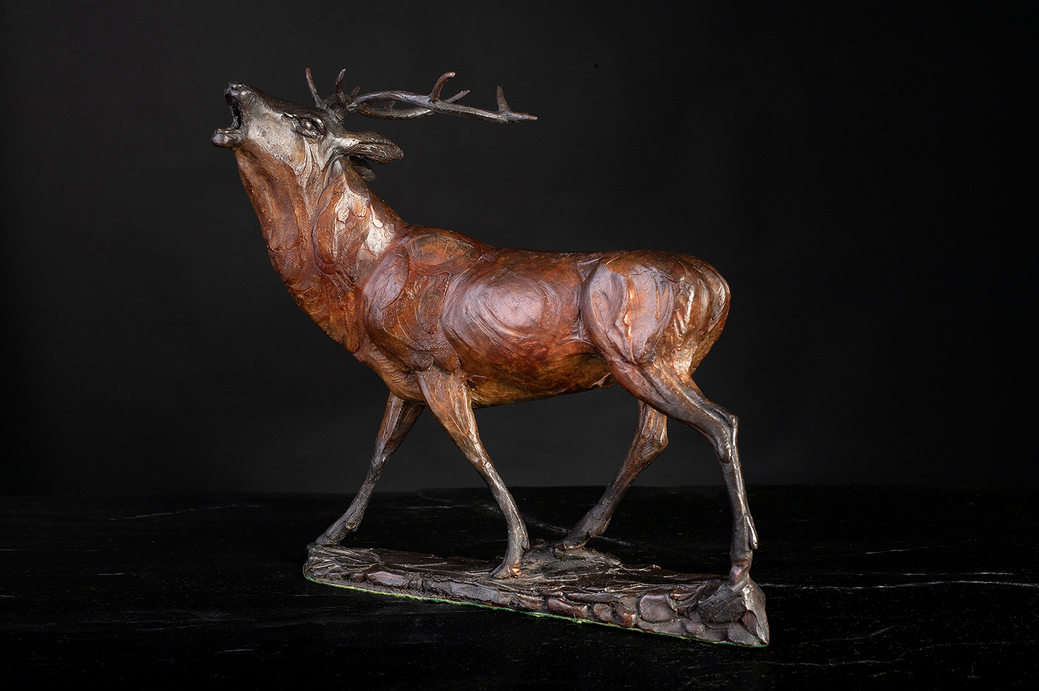 'Stag Study' Limited Edition Bronze Sculpture by Ian Greensitt