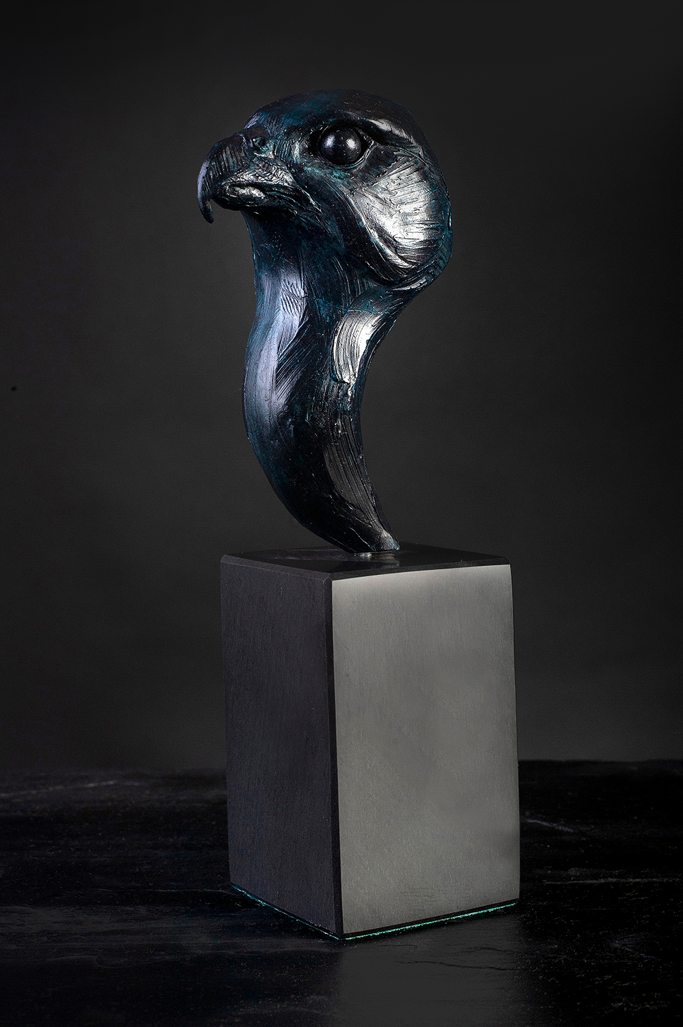 'Peregrine Falcon - Head Study' Limited Edition Bronze Sculpture by Ian Greensitt