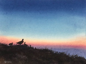'Morning Star' - Original Watercolour Painting by Owen Williams - 18 x 23cm
