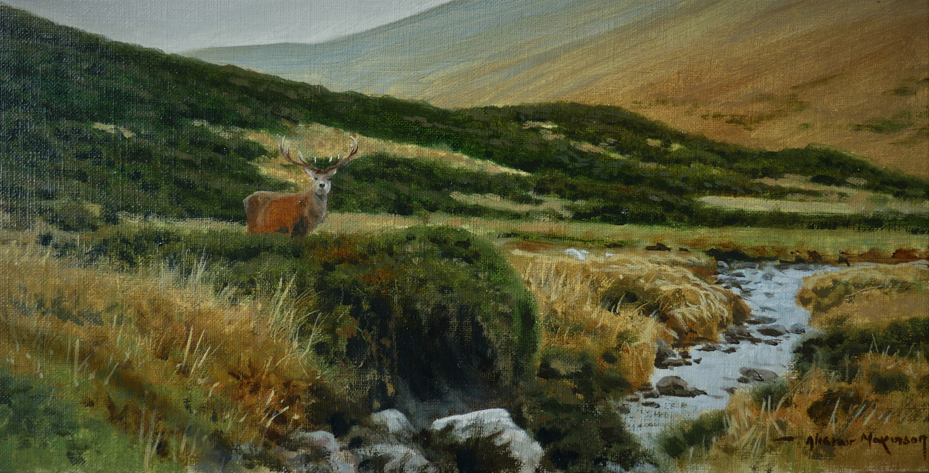'Long Stag' - Original Oil Painting by Alistair Makinson - 15 x 30cm