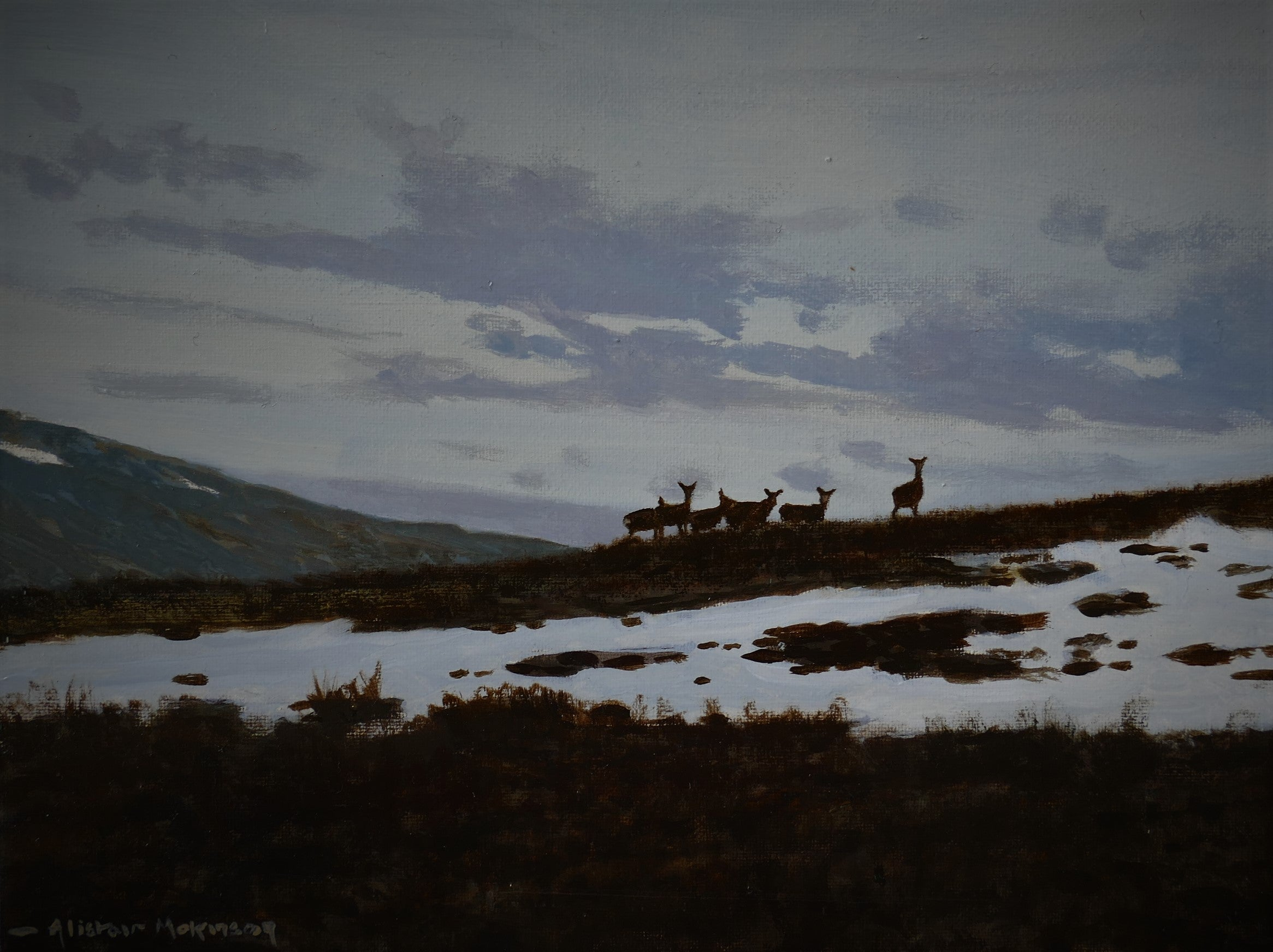 'Winter Hinds' - Original Oil Painting by Alistair Makinson - 18 x 24cm