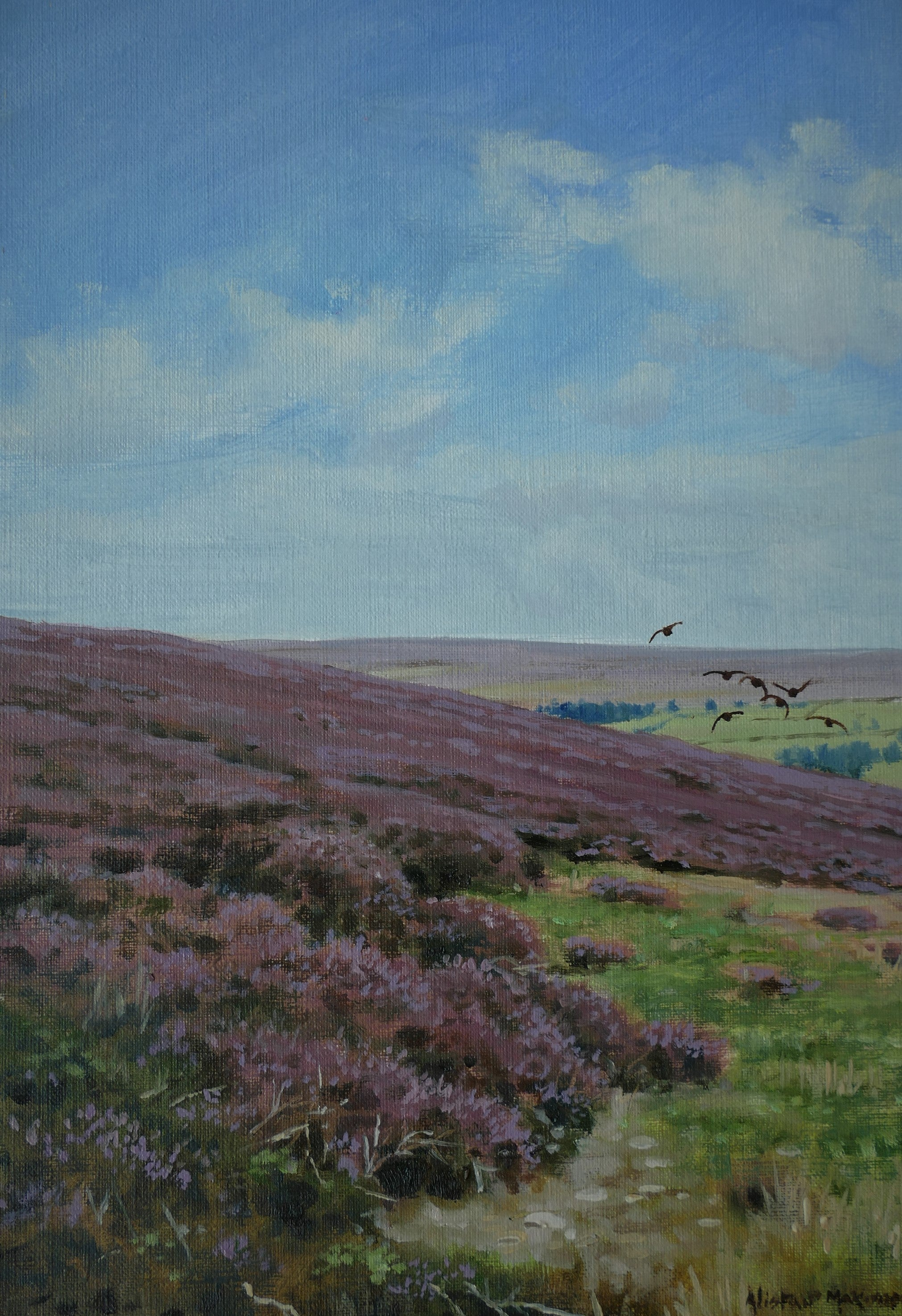 'Bransdale Grouse' - Original Oil Painting by Alistair Makinson - 20 x 30cm