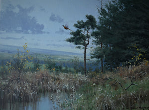 'Rising Pheasant' - Original Oil Painting by Alistair Makinson - 30 x 40cm