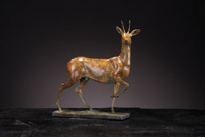 'Roe Deer' - Limited Edition Bronze sculture by Ian Greensitt