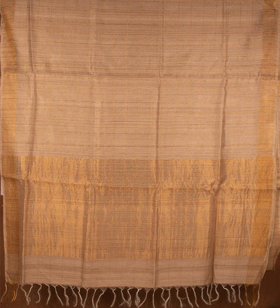 Natural Pure Tussar Silk Handwoven Saree | 22152101