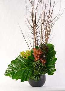 POTTED SCULPTURAL ARRANGEMENT