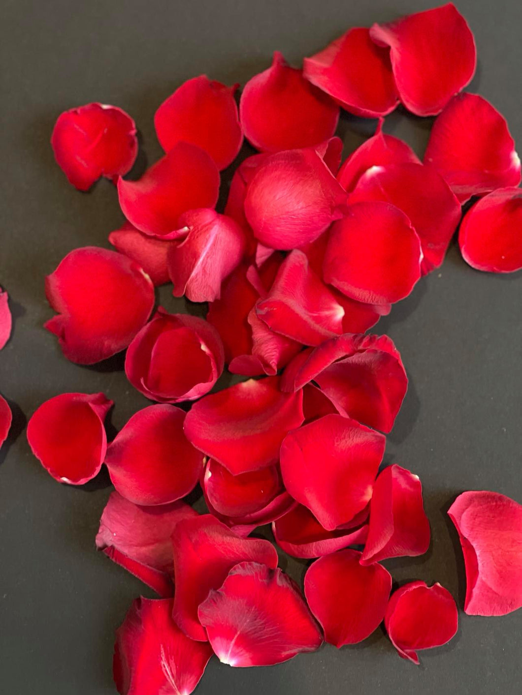 VALENTINES DAY RED ROSE PETALS