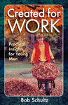 Created For Work: Practical Insights For Young Men-0