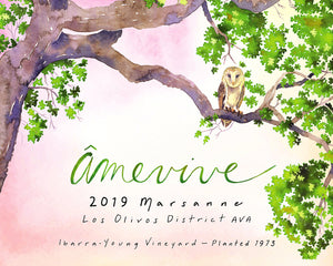 Âmevive - 'Ibarra-Young Vineyard' - Marsanne - Los Olivos District, Santa Barbara County, CA - 2019