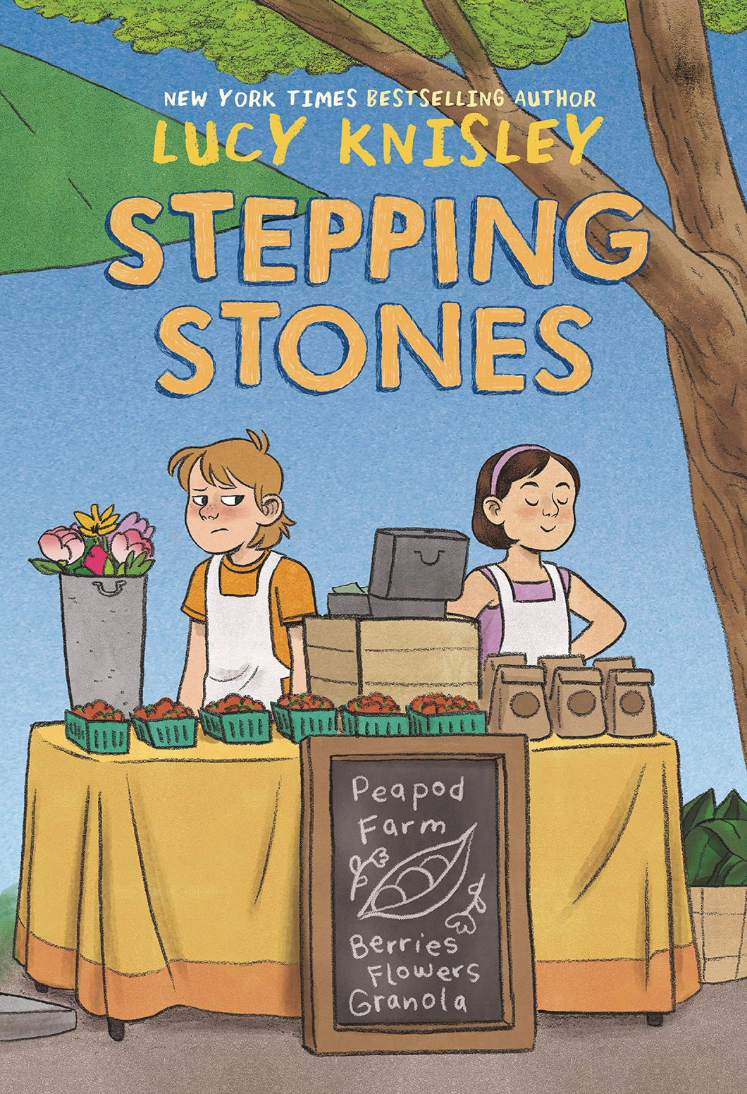 STEPPING STONES GN (C: 0-1-0) - 2 Geeks Comics