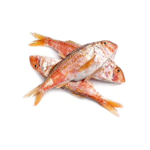 Fresh Tekir (Red Mullet) 5kg box