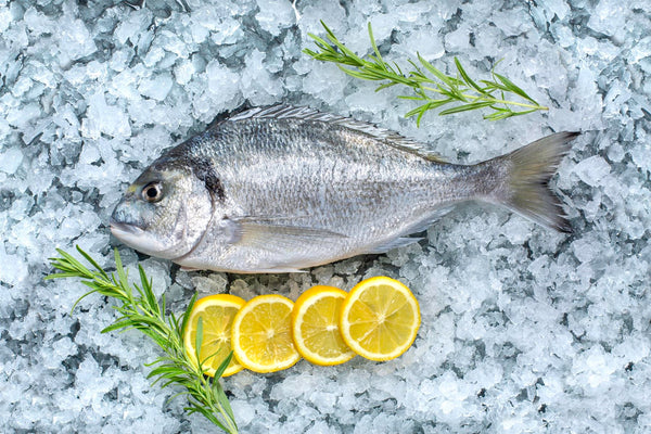 Fresh Cipura / Cupra (Sea Bream / Dorado) 5kg box