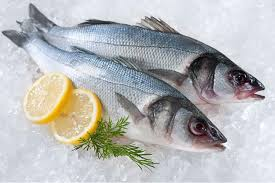 Fresh Levrek (Branzino / Mediterranean Sea Bass) 5kg box