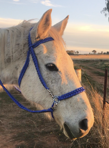 Paracord Side Pull Bridle Converter