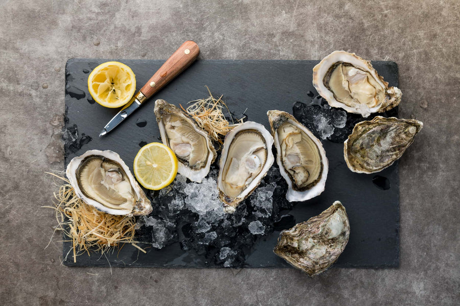A Complete Guide to Oyster: How to Store, Shuck & Serve