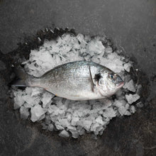 Load image into Gallery viewer, Gilt Head Bream 400-600 - Fish To Your Door