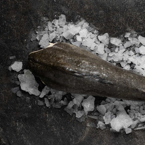 Frozen Black Cod - fishtoyourdoor - UK FISH DELIVERY