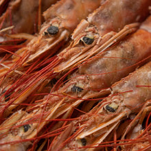 Load image into Gallery viewer, Cooked King Prawns - fishtoyourdoor - UK FISH DELIVERY
