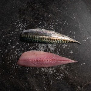 Mackerel - fishtoyourdoor - UK FISH DELIVERY