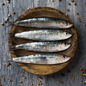 Sardines - fishtoyourdoor - UK FISH DELIVERY
