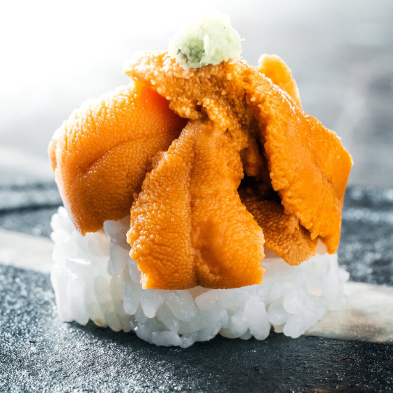Sea Urchin Roe - fishtoyourdoor - UK FISH DELIVERY